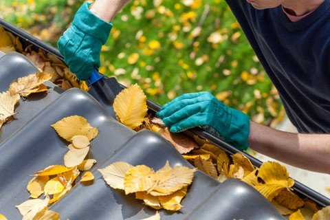 Eavestrough and Gutter Cleaning